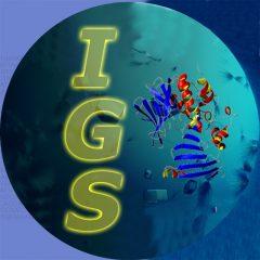 Laboratoire Information Génomique et Structurale
